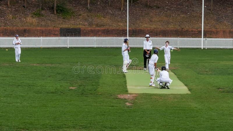 悉尼,澳大利亚- 2014年11月30日:竞争在蟋蟀比赛的两个队宽射击  免版税库存图片