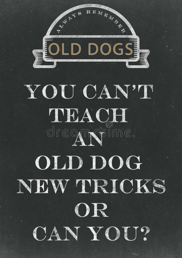 您不可能教一条老狗在Chalkbo写的新的把戏手 皇族释放例证