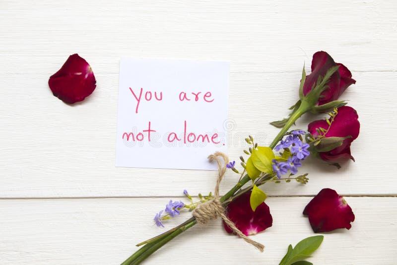 您不是与红色玫瑰色花的单独消息卡片手写 免版税库存图片