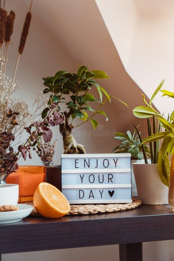 您可以在灯箱上享受白天信息,该灯箱位于桌上,桌上摆放着茶和绿色家居植物 舒适的休闲区 免版税库存图片