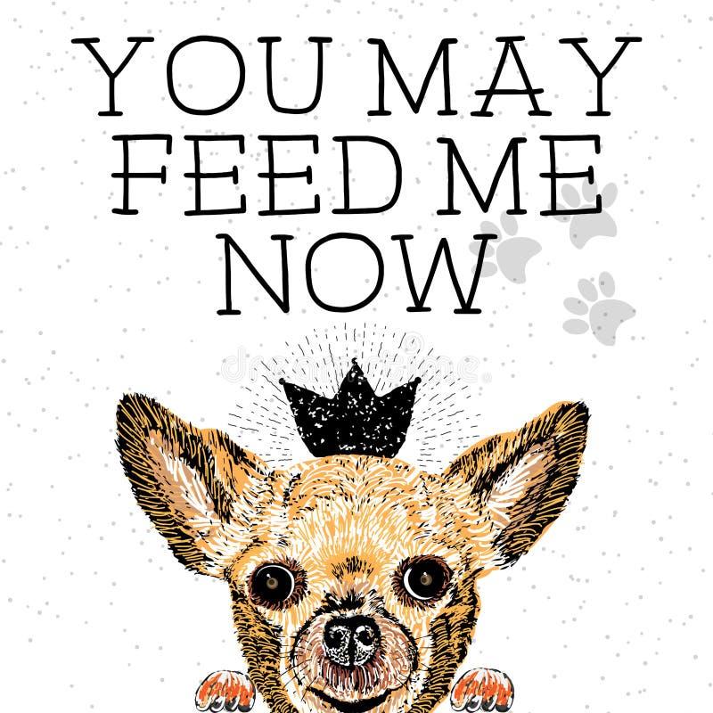 您可以现在喂养我 皇族释放例证