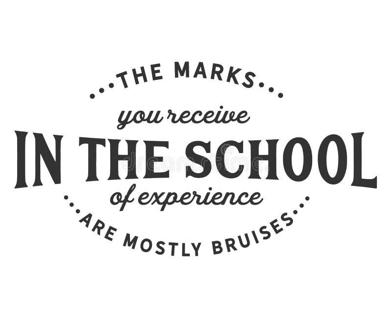 您在经验学校接受的标记是主要挫伤 向量例证