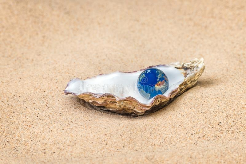 您牡蛎的世界 免版税库存图片