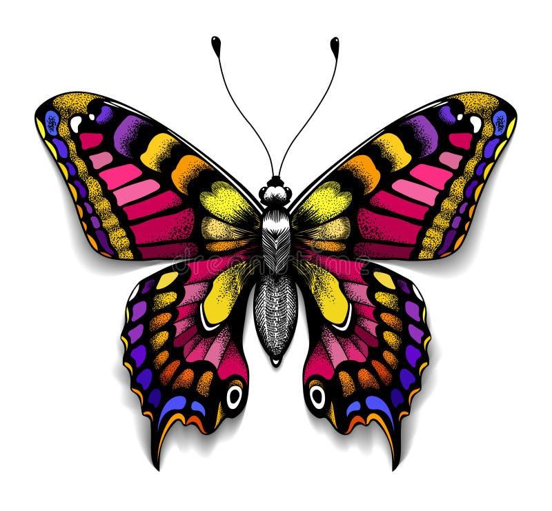 您的chestColorful Machaon蝴蝶的美好的纹身花刺 与阴影的热带现实蝴蝶 阴物的标志 向量例证