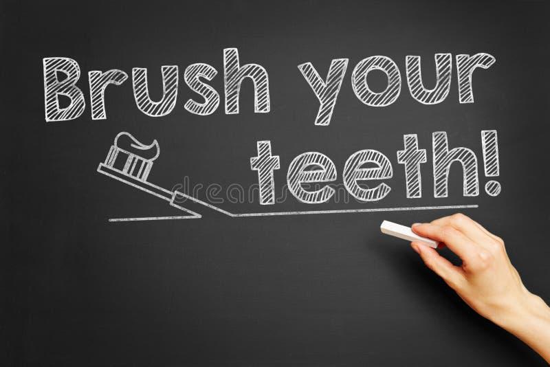 您画笔的牙 免版税图库摄影