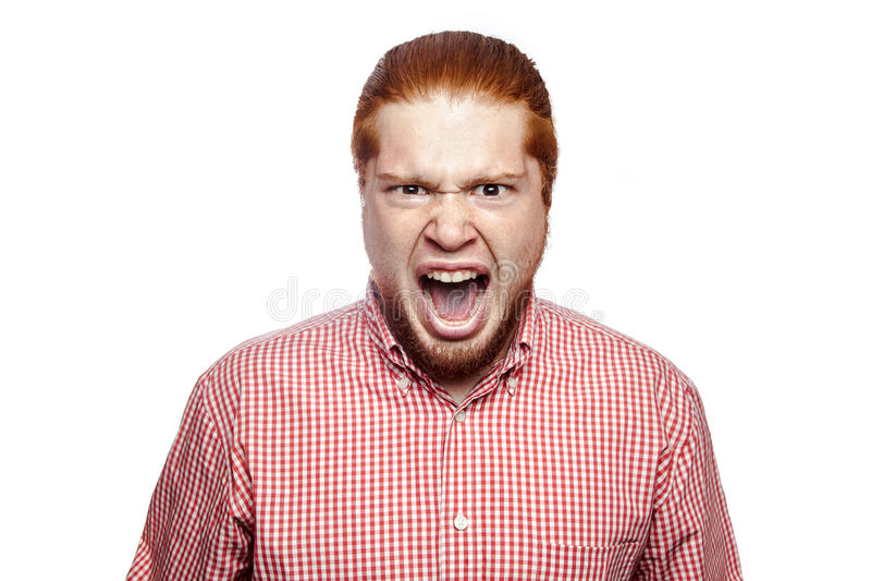 情感红头发人商人 库存图片
