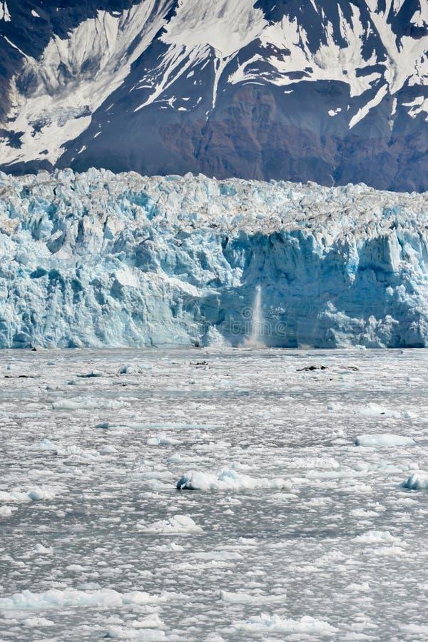 惊人的哈伯德冰川在阿拉斯加在一个夏日 库存图片
