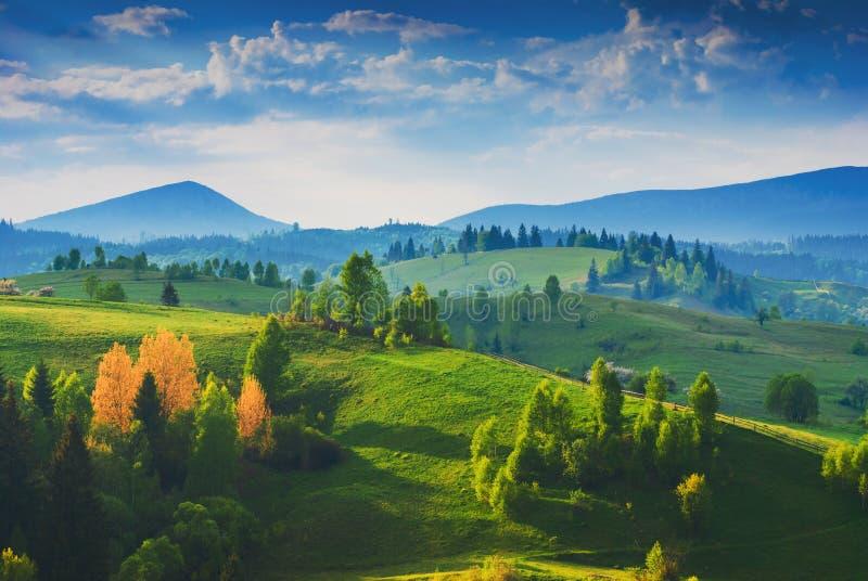 惊人的喀尔巴阡山脉的有薄雾的谷 免版税库存图片