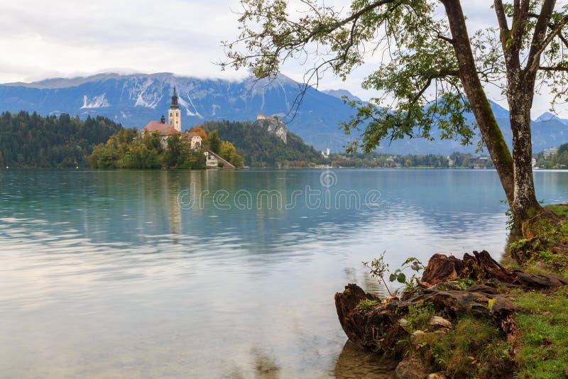 惊人的城堡流血湖 免版税库存照片