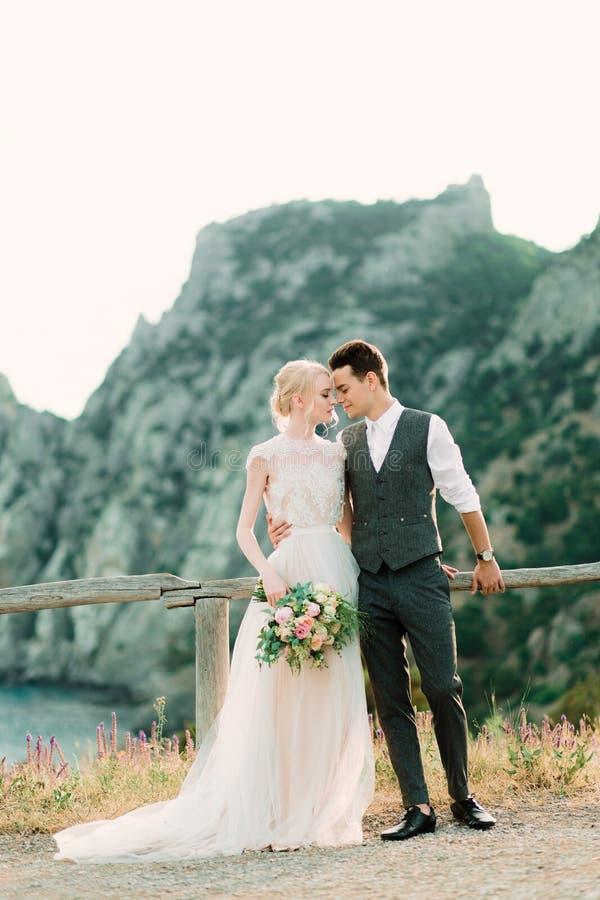 惊人的新娘和新郎互相拥抱在金黄小山的嫩身分 库存照片