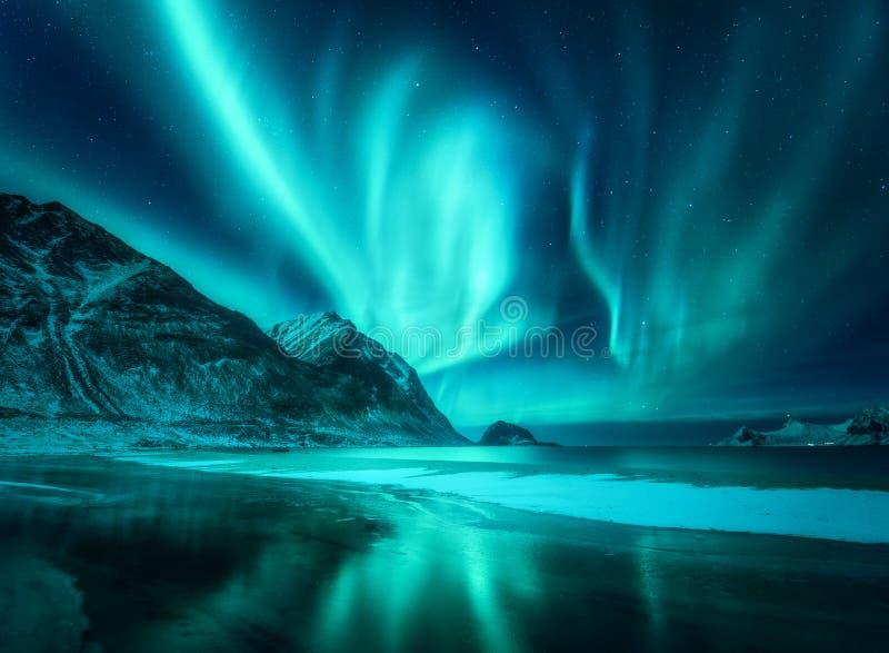 惊人的极光Borealis 北极光在罗弗敦群岛海岛 免版税图库摄影