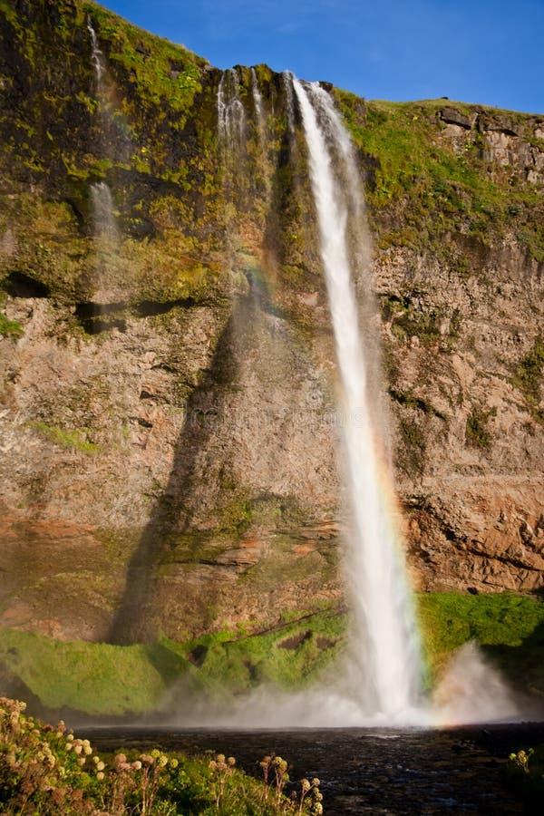 惊人的瀑布在冰岛 库存照片