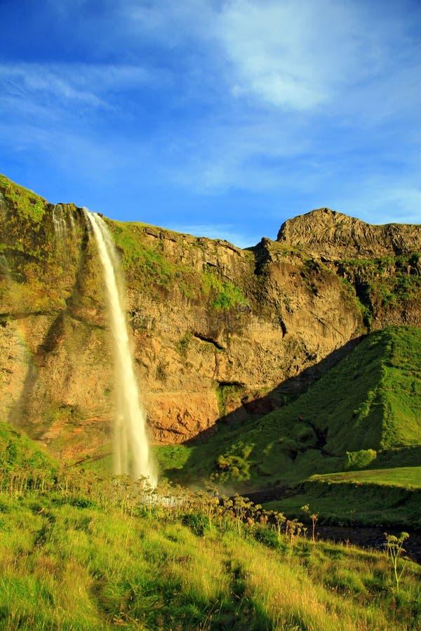 惊人的瀑布在冰岛 库存图片