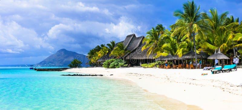 惊人的白色海滩毛里求斯海岛 热带假期 免版税库存图片