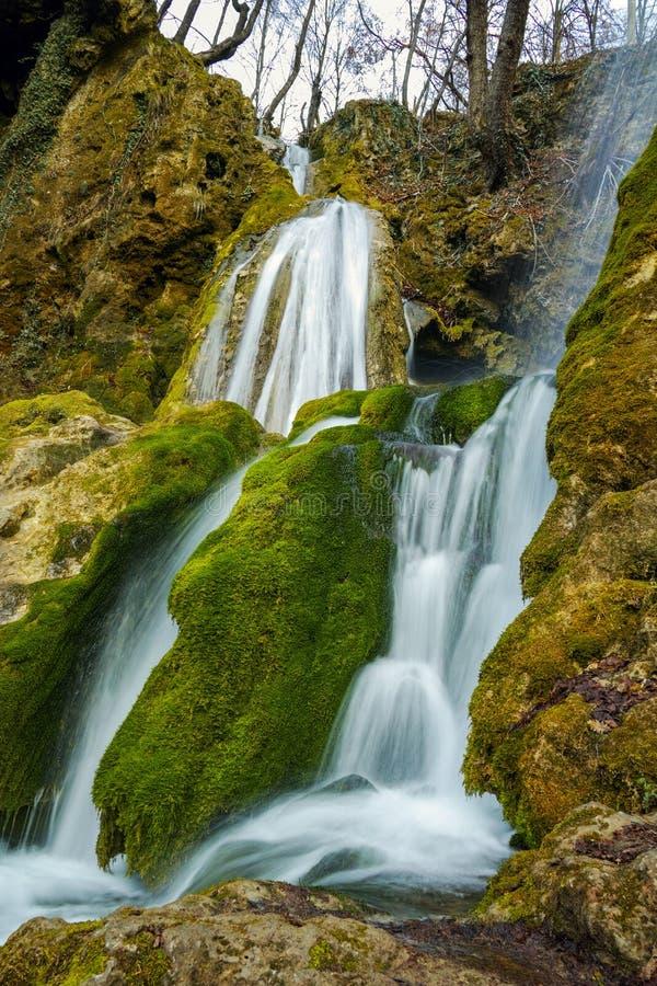 惊人的看法美丽的Bachkovo瀑布在Rhodopes山,保加利亚落下 免版税图库摄影