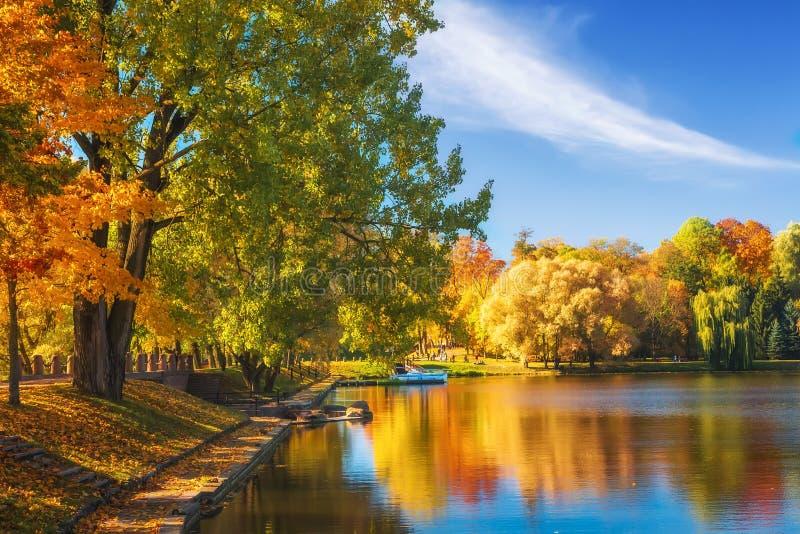 惊人的秋天风景在清楚的晴天 五颜六色的树在湖水表面反射了在公园 秋季美丽的公园 免版税库存照片