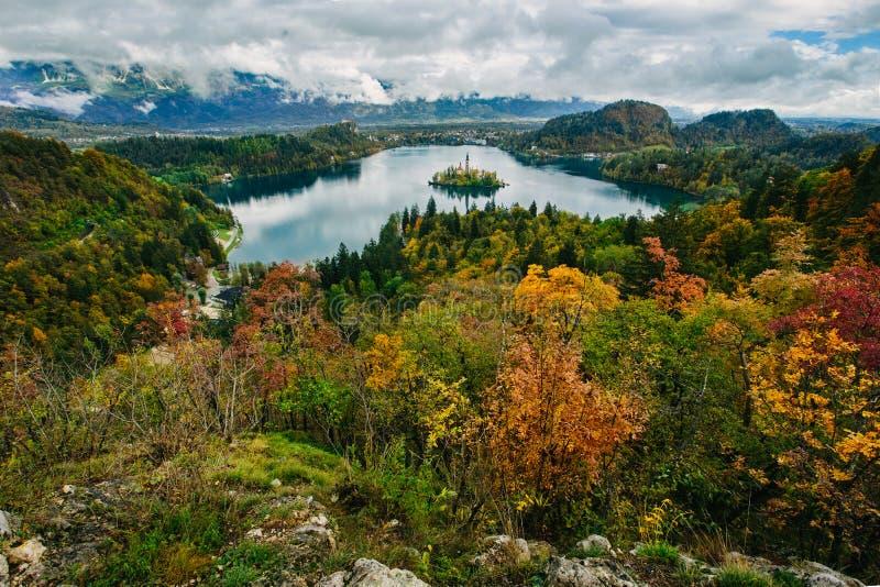 惊人的空中全景布莱德湖,斯洛文尼亚,欧洲(Osojnica) 图库摄影