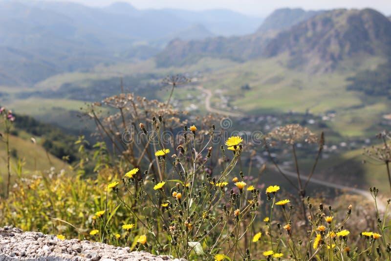惊人的通行证Gumbashi在Elbrus附近的9月 图库摄影