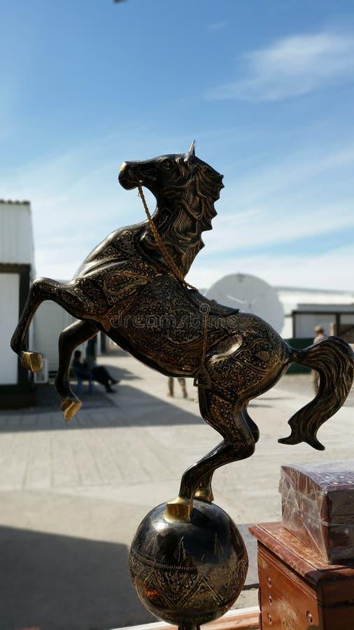 惊人的马 免版税图库摄影