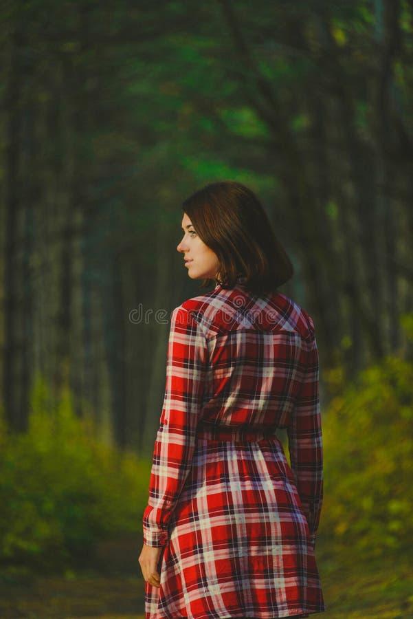 惊人的画象美丽的女孩 库存照片