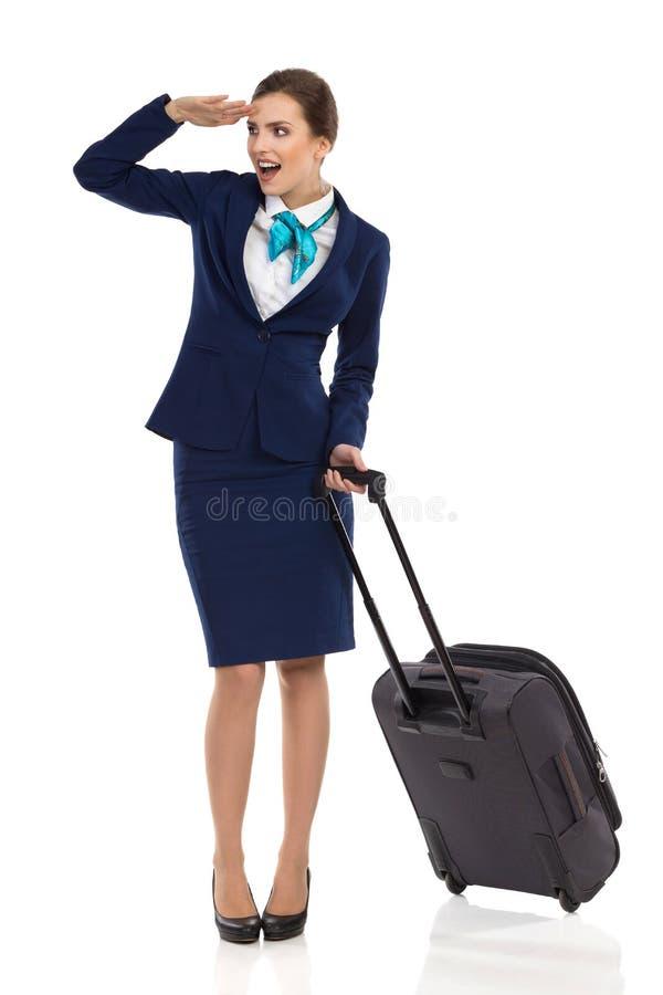 惊奇的Stewardes看起来去和谈话 免版税库存图片