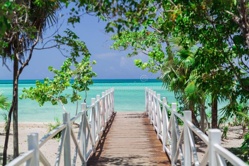 惊奇,导致海滩的木老桥梁惊人的看法通过热带美丽的庭院 免版税库存照片
