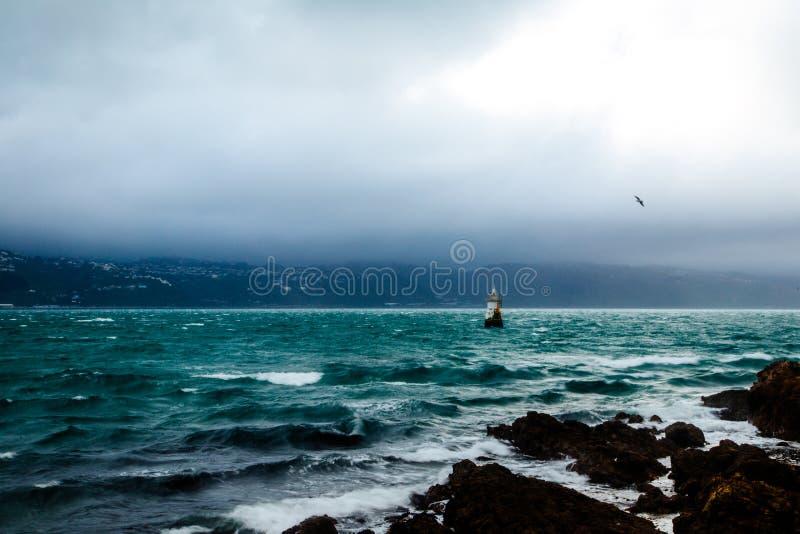 惠灵顿海湾,新西兰 免版税库存照片