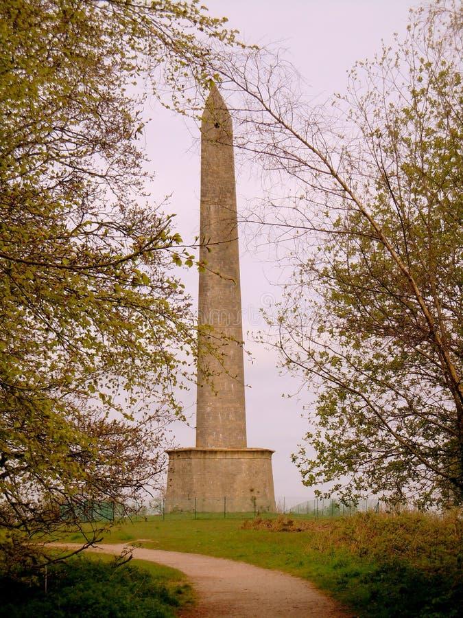 惠灵顿纪念碑 免版税库存照片