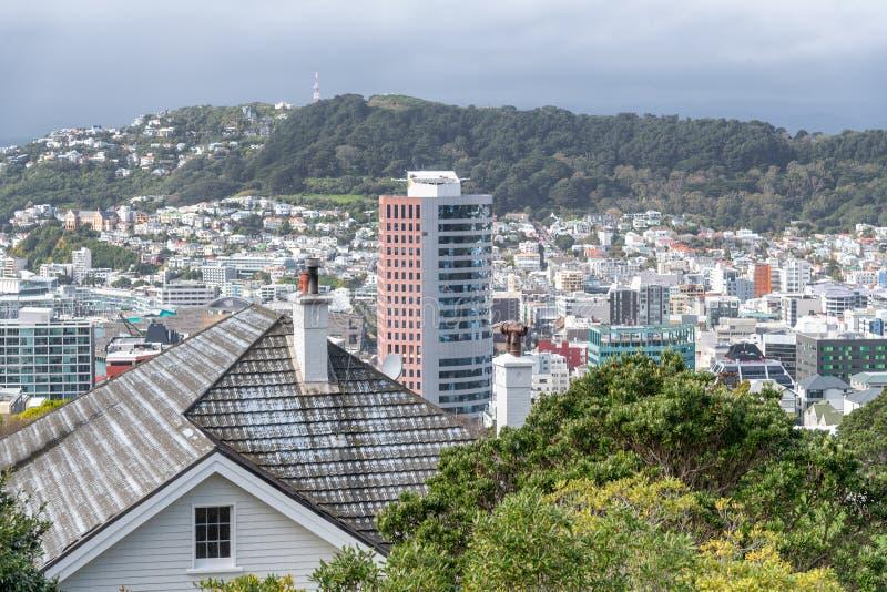 惠灵顿,新西兰空中地平线  免版税库存照片