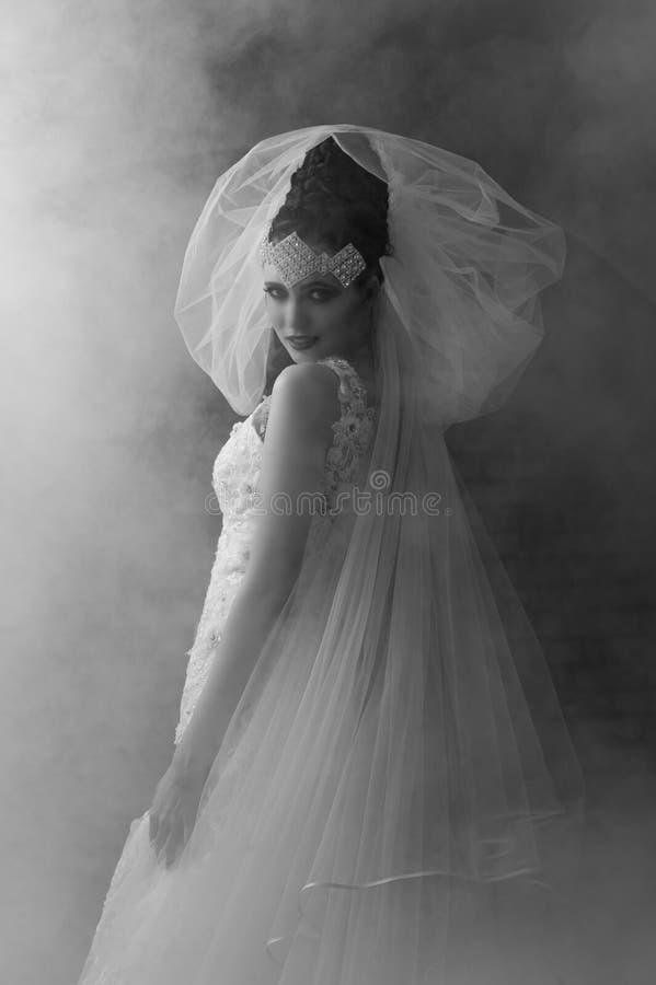 幻想新娘单色画象  库存照片