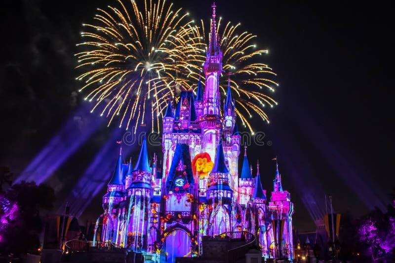 愉快地从此以后是壮观的烟花显示在黑暗的夜背景的灰姑娘的城堡在不可思议的王国31 库存图片