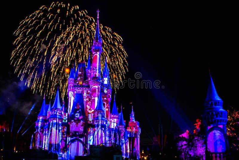 愉快地从此以后是壮观的烟花显示在黑暗的夜背景的灰姑娘的城堡在不可思议的王国34 库存图片