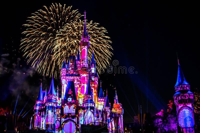愉快地从此以后是壮观的烟花显示在黑暗的夜背景的灰姑娘的城堡在不可思议的王国33 免版税库存照片