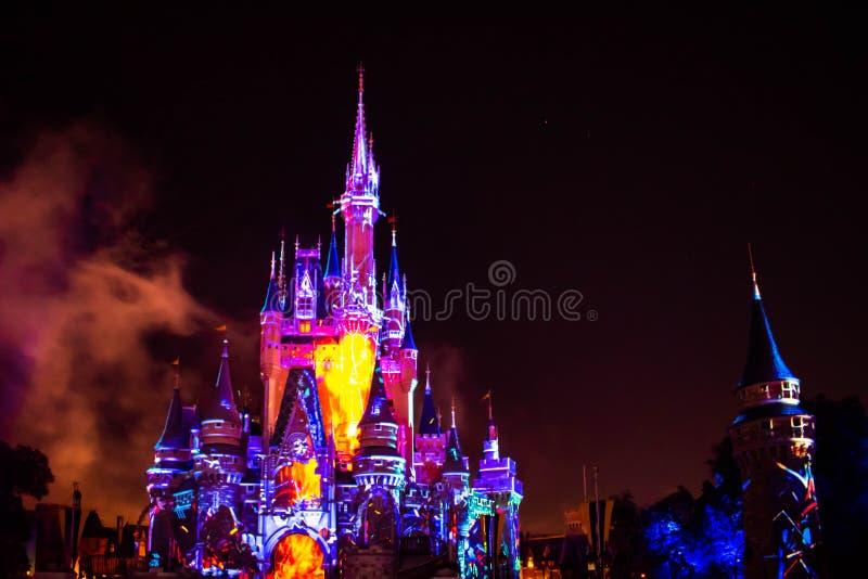 愉快地从此以后是壮观的烟花显示在黑暗的夜背景的灰姑娘的城堡在不可思议的王国37 库存图片