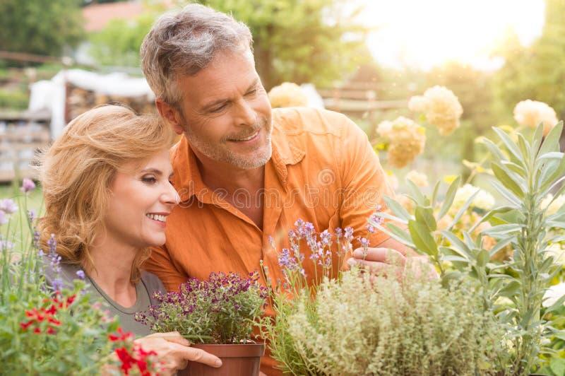 愉快成熟夫妇从事园艺 库存图片