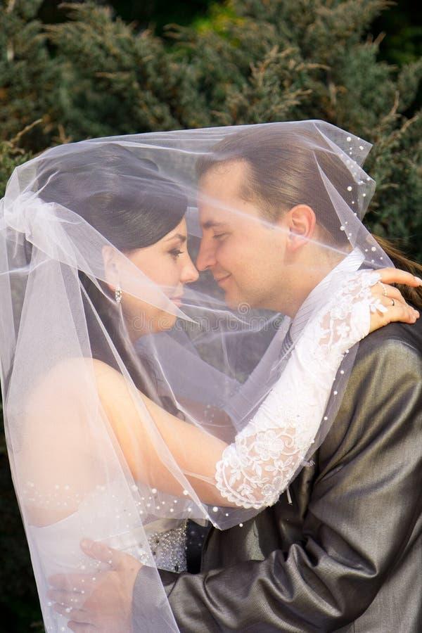 愉快新娘的新郎 免版税库存照片
