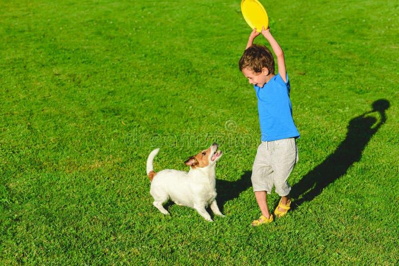愉快的一起使用在绿草的狗和孩子晴朗的夏日 免版税库存照片