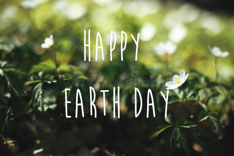 愉快的世界地球日文本,在美丽的银莲花属花的标志在晴朗的春天森林,选择聚焦 ?? r 库存图片
