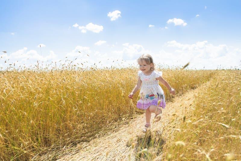 愉快的两岁跑在农厂黑麦领域路的女孩户外在夏天 免版税库存照片