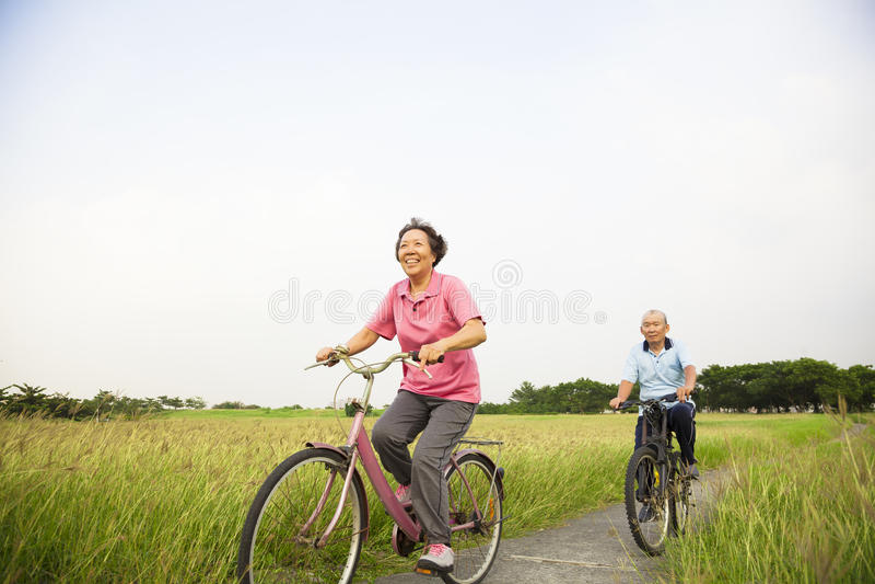 愉快的亚裔年长前辈在有蓝色的公园结合骑自行车 免版税库存图片