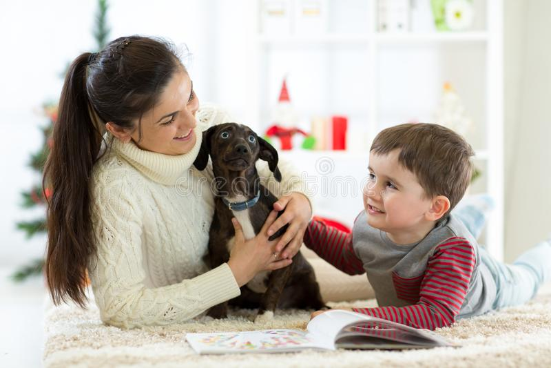 愉快的享受使用与新的狗的家庭母亲和儿子在圣诞节 库存图片