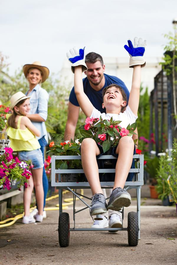 愉快的使用与独轮车的父亲和他的儿子,当看他们的女孩和她的母亲自温室时 免版税图库摄影