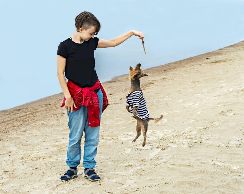 愉快的使用在沙滩的女孩和狗 免版税库存照片