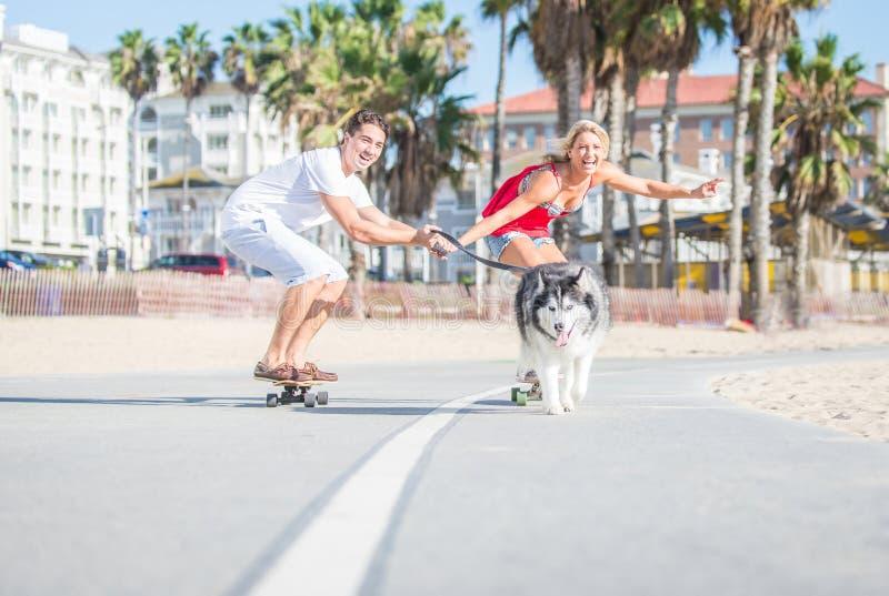 愉快的做体育的夫妇和他们多壳的狗 库存照片