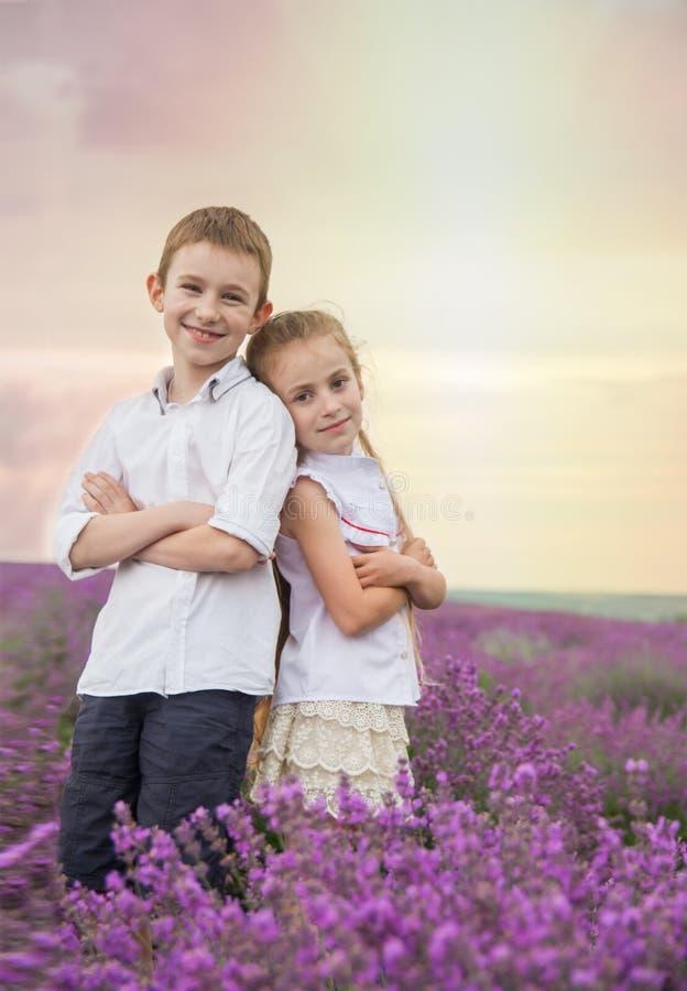 愉快的兄弟和姐妹在淡紫色夏天调遣 库存图片
