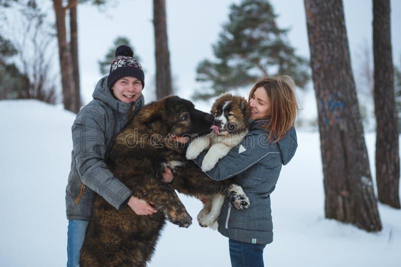愉快的加上两条狗在冬天森林可爱的片刻室外假日 免版税库存图片