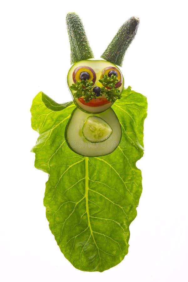 愉快的动物-从菜的兔子 免版税库存照片