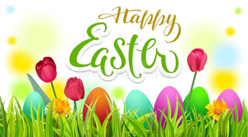愉快的复活节文本贺卡 晒干春天绿草、色的鸡蛋和花 皇族释放例证