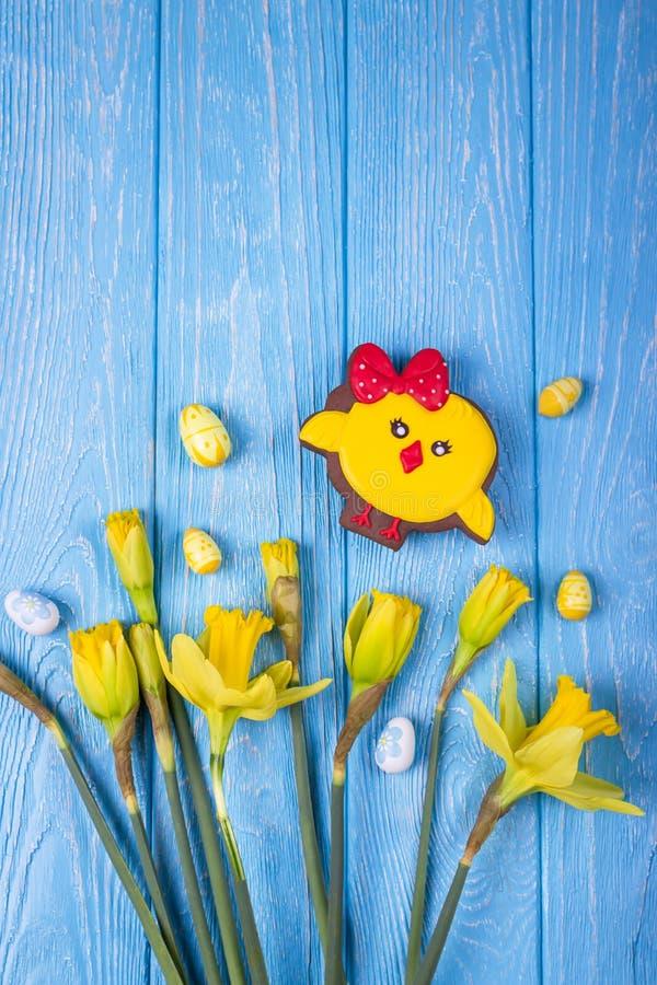 愉快的复活节 春天开花黄色黄水仙、复活节彩蛋和姜饼鸡在蓝色背景 顶视图,自由空间 免版税库存图片