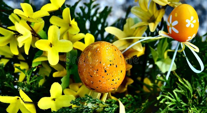 愉快的复活节有斑点的鸡蛋 免版税图库摄影